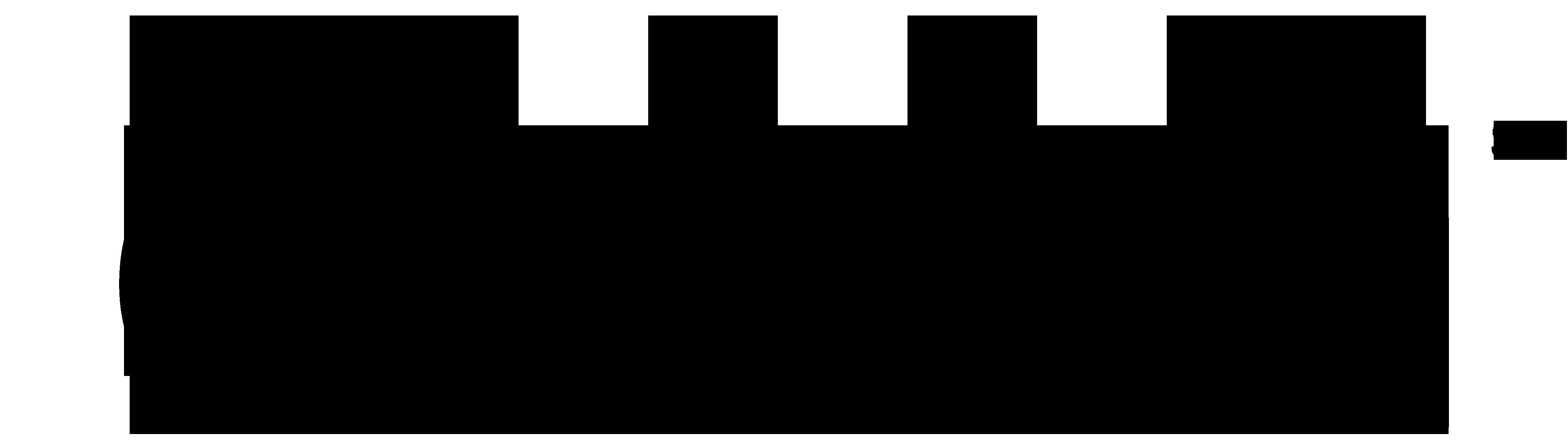 cinch logo 2020 - pureblack